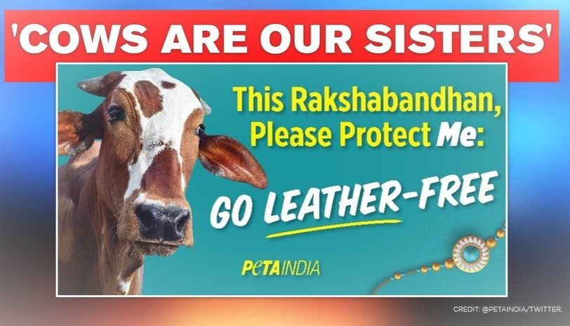 Billboards placed by PETA India
